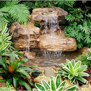 Picture for category Universal Rock Water Features