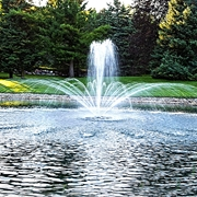 Picture for category Airmax Ecosystems EcoSeries Fountains