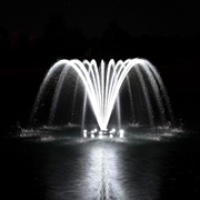 Picture for category Airmax Ecosystems EcoSeries Fountain Lighting