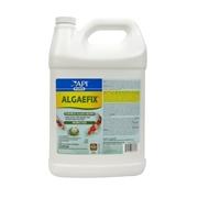 169C-API-AlgaeFix-Gallon