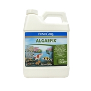 169G-API-AlgaeFix-32oz