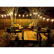 Picture for category Patio Lights