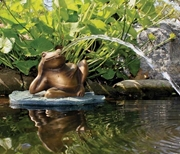 Aquascape Lazy Frog On Lily Pad Spitter W/ Pump