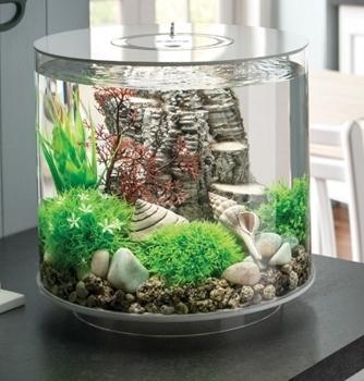 BiOrb Tube 15 With LED Aquarium