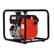 Red Lion 196 CC Cast Iron Multi-Purpose Utility Pump