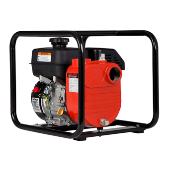 Red Lion 196 CC Cast Iron Multi-Purpose Utility Pump