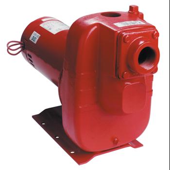 Red Lion 3 HP Cast Iron Industrial Sprinkler Pump