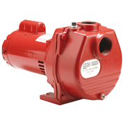 Red Lion 1 HP Centrifugal Self-Priming Sprinkler Pump