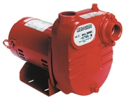 Red Lion Cast Iron Surface Effluent Pump - 3/4 HP